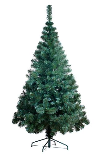 Ель GreenTrees - пушистая и красивая ель с максимальным уровнем высоты 3 метра.